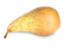 Una pera matura Fotografia Stock Libera da Diritti
