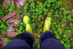 Una persona in stivali sta in una foresta su un muschio Fotografia Stock