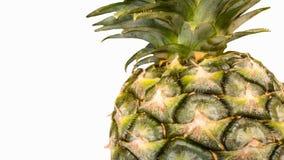 Una piña en el fondo blanco Fruta orgánica para la forma de vida sana de la dieta Imágenes de archivo libres de regalías