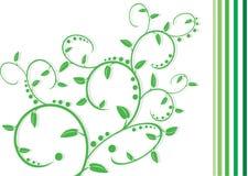 Una pianta dell'elemento della decorazione. Fotografia Stock Libera da Diritti