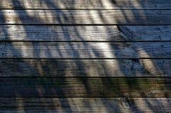 Una piattaforma di legno sembrante sdrucciolevole fotografia stock libera da diritti