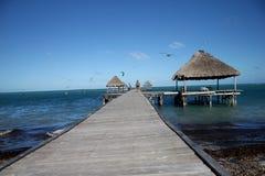 Una piattaforma di vista sopra l'oceano su Cayo Guillermo in Cuba fotografia stock libera da diritti