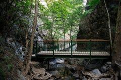 Una piattaforma e un ponte di osservazione a Millomeris cade vicino a Platres, Cipro Fotografia Stock