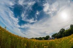 Una piccola casa rurale sull'orlo del campo con i fiori gialli Una linea arrotondata deliberatamente curva di orizzonte immagine stock libera da diritti