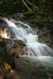 Una piccola cascata in una foresta immagini stock libere da diritti