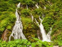 Una piccola cascata nella foresta nelle alpi austriache Immagini Stock Libere da Diritti