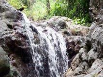 Una piccola cascata nella giungla selvaggia Isola di Palawan video d archivio