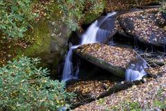 Una piccola cascata nelle montagne fumose è viva con colore Immagine Stock