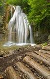 Una piccola cascata sulla torrente montano, belle radici nella priorità alta Fotografia Stock Libera da Diritti
