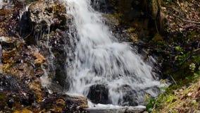 Una piccola cascata sulle Pre-alpi italiane stock footage