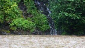 Una piccola cascata vicino al lago Synevir, che cade in un fiume rapido della montagna video d archivio
