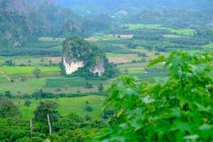 Una piccola collina nella valle, con gli alberi piantati su una montagna circostante inferiore e grande Fotografia Stock