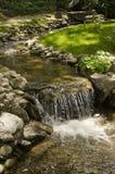 Una piccola insenatura con una cascata Fotografie Stock