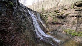 Una piccola insenatura e cascate nella foresta di autunno stock footage