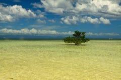 Una piccola isola attraverso la spiaggia al mare aperto all'isola di Panglao, Bohol Fotografia Stock