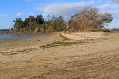 Una piccola isola in un estuario a bassa marea, circondata dalla marea allinea fotografie stock libere da diritti