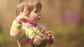 Una piccola ragazza sveglia è affascinata con un vecchio alveare (il nido delle vespe) che aveva trovato archivi video