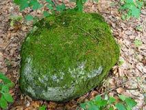 Una piedra grande en el bosque cubierto con el musgo imagenes de archivo