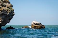 Una pietra nel mare Immagine Stock