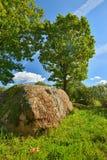 Una pietra spirituale antica delle tribù baltiche immagini stock