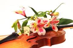 Una pieza del primer de violín y de algunas flores Imagen de archivo libre de regalías