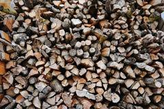 Una pila de leña del abedul - un fondo natural Fotografía de archivo libre de regalías