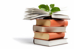 Una pila de libros en un blanco. Fotos de archivo libres de regalías