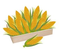 Una pila de maíz fresco en caja de madera ilustración del vector