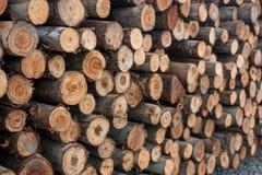 Una pila de madera para la construcción Foto de archivo