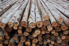 Una pila de madera para la construcción Fotos de archivo libres de regalías
