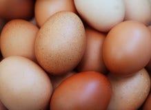 Una pila de pollo fresco crudo de Brown Eggs el fondo Imagen de archivo libre de regalías