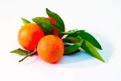 Una pila de ramificaciones de la mandarina Imagenes de archivo