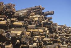 Una pila de registros marcó con etiqueta para procesar en un molino de la madera de construcción en Willits, California Fotografía de archivo libre de regalías