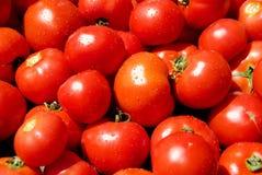 Una pila de tomates dewily rojos Fotografía de archivo