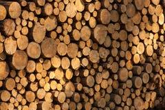 Una pila de troncos de árbol que mienten, esperando para ser quemado fotografía de archivo