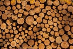 Una pila de troncos de árbol que mienten, esperando para ser quemado fotos de archivo