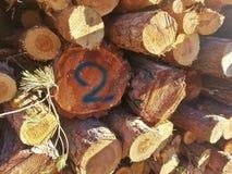 una pila del pino de los registros de corte natural recientemente para producir la le?a Un registro lleva el número dos escrito fotografía de archivo libre de regalías