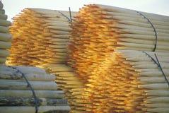Una pila di alberini impacchettati della rete fissa immagini stock libere da diritti
