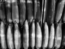 Una pila di cereale ad un mercato del ` s dell'agricoltore - CEREALE - VEGANO immagine stock