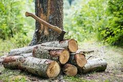 Una pila di legna da ardere e di ascia nella foresta Fotografia Stock Libera da Diritti