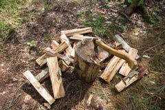 Una pila di legna da ardere e di ascia nella foresta Fotografia Stock