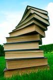 Una pila di libri che si trovano sull'erba Fotografia Stock Libera da Diritti
