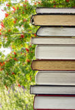 Una pila di libri su un fondo della cenere di montagna Immagini Stock