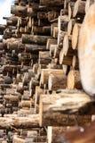 Una pila industriale di tronchi di albero immagine stock libera da diritti