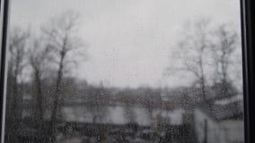 Una pioggia persistente di estate in Germania - vista attraverso il vetro con il fuoco sulle gocce di pioggia video d archivio