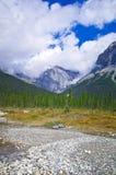 Una pista de senderismo en Yo-ho el parque nacional, en la montaña canadiense de las montañas rocosas Foto de archivo