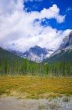 Una pista de senderismo en Yo-ho el parque nacional, en la montaña canadiense de las montañas rocosas Fotografía de archivo