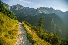 Una pista de senderismo hermosa en las montañas Paisaje de la montaña en Tatry, Eslovaquia foto de archivo libre de regalías