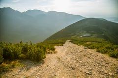 Una pista de senderismo hermosa en las montañas Paisaje de la montaña en Tatry, Eslovaquia fotos de archivo libres de regalías