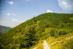Una pista de senderismo hermosa en las montañas Paisaje de la montaña en Tatry, Eslovaquia imagen de archivo